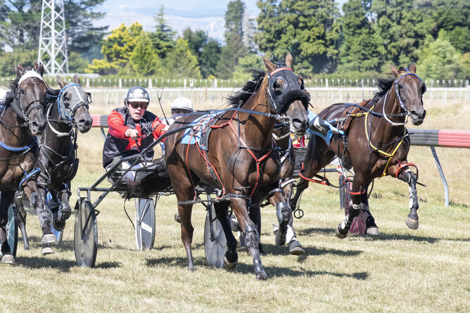 Kyle Marshall and Alta Leonie on their way to winning the Stratford Cup (2600m) - Royden Williams