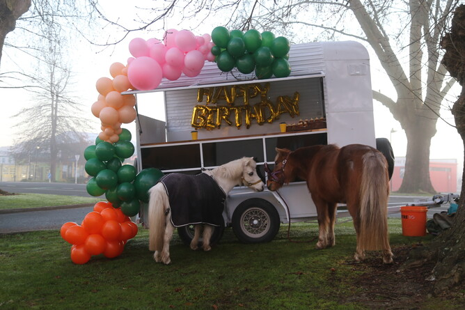 Kidz Kartz ponies Cooper (left) and Caramello (right) took a trip into town to celebrate their birthdays with the Community. - Photo: Picket Fence