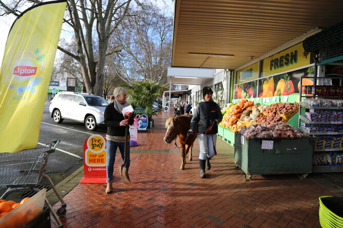 Shannon, Libby and Caramello take to the streets - Photo: Picket Fence