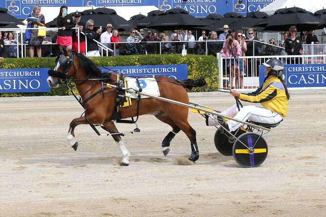 Kidz Kartz New Zealand Cup winners Jordyn Bublitz and Chaos - Race Images South